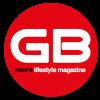 logo web stop sida GB LGTB
