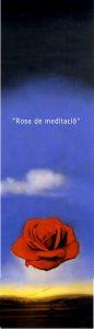 Rosa de meditació